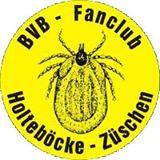 Logo BVB fanclub Holteböcke Züschen